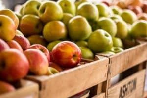 improve organic food labeling